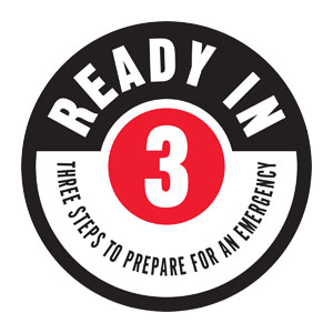Ready In Three logo